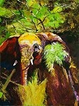 SOLD Paddy - Elephant